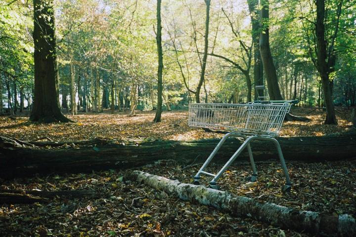 Una carrello della spesa nel bosco